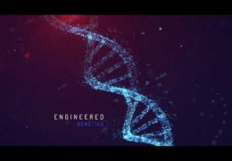 DNA – After Effects Template