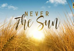 Fields Of Gold – Lyrics Video